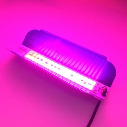 Светодиодный фитосветильник Espada 44567 E-COBFitoFS50, 50W, 85-265V