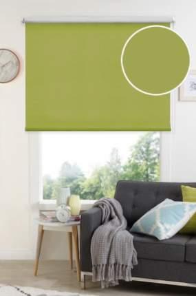 Рулонные шторы Eskar 34080037170 зеленый 37x170