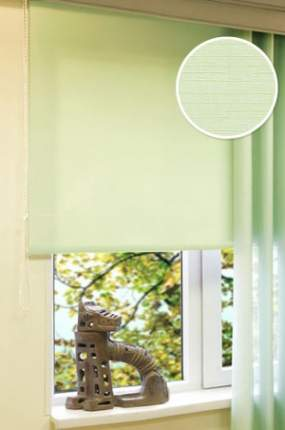 Рулонные шторы Eskar 31017052170 зеленый 52x170