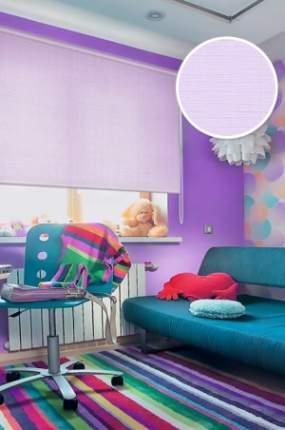 Рулонные шторы Eskar 31007048170 фиолетовый 48x170