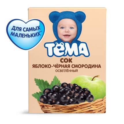 Сок Тёма Яблоко-черная смородина осветленный, 200 мл