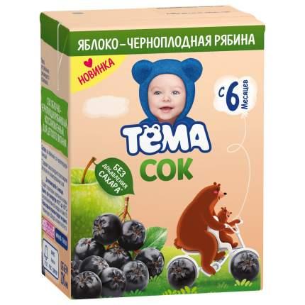Сок Тёма Яблоко-чернопладная рябина осветленный, 200 мл