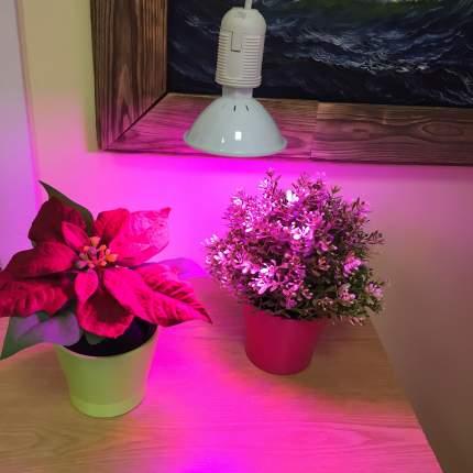 Светодиодная фитолампа для растений Espada 44056 Fito E27-200-10W 85-265V