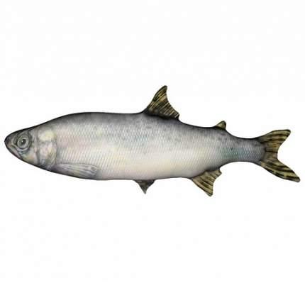 Игрушка-антистресс Штучки, к которым тянутся ручки Рыба Семга большая
