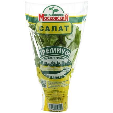 Салат Московский витаминный в горшке