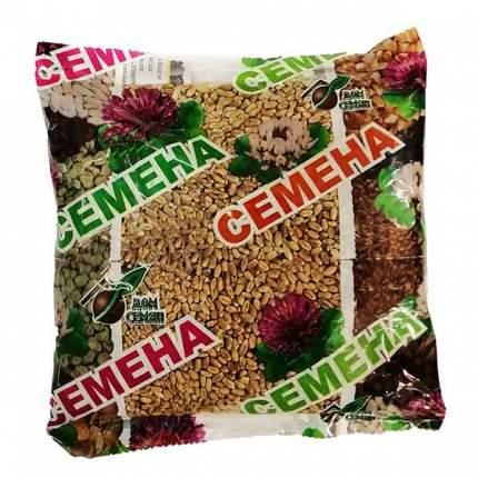 Семена газонных трав и сидератов Дом семян Сидерат Пшеница мягкая яровая Лада 0,5 кг
