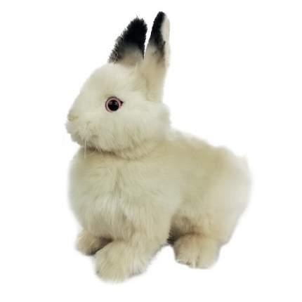 """Мягкая игрушка """"Кролик кремовый"""", 23 см"""