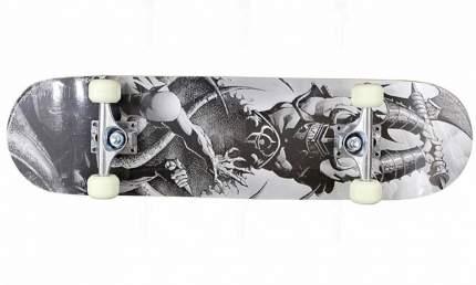 "Скейтборд Action PWS-630 31""х8"""