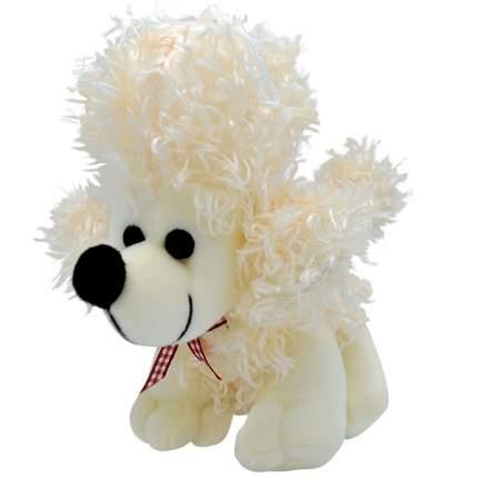 """Мягкая игрушка """"Собака пудель"""", 20 см (белый)"""