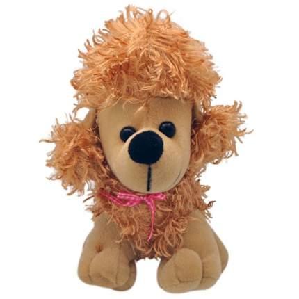 """Мягкая игрушка """"Собака пудель"""", 20 см (коричневый)"""