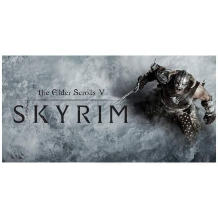 Игра The Elder Scrolls V: Skyrim для Nintendo Switch