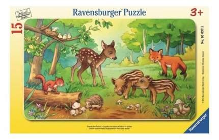Пазл ravensburger в рамке «детеныши животных в лесу» 15 элем.