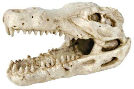 Грот для аквариума TRIXIE Crocodile Skull Череп крокодила 14cм, полиэфирная смола 7х14х8см
