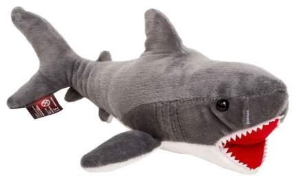Мягкая игрушка АБВГДейка Акула серая Челика, 35 см