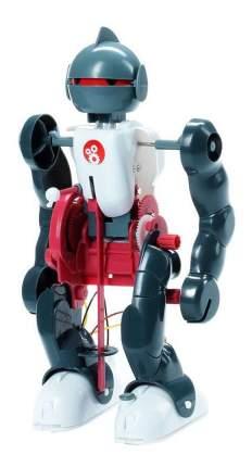 Французские опыты науки с буки Bondibon юный вундеркинд робот-акробат