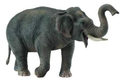 Фигурка collecta азиатский слон, xl