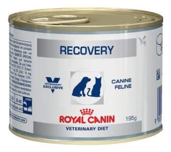 Консервы для кошек и собак ROYAL CANIN Recovery, домашняя птица, 195г