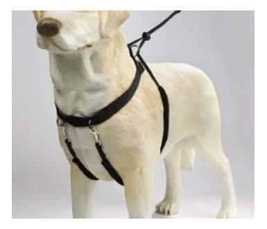 Шлейка для собак Beeztees нейлоновая, размер L