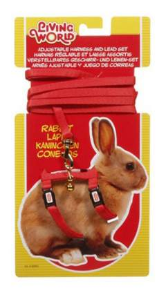 Поводок и шлейка Hagen для кроликов, красный