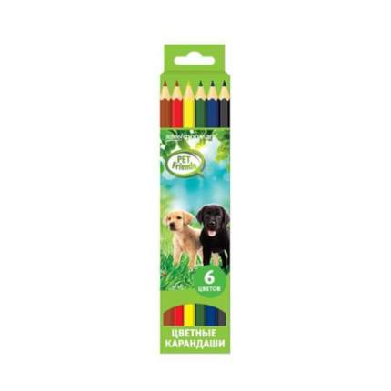 Набор цветных карандашей ЛЮБИМЫЕ ПИТОМЦЫ 6 цв. шестигранные