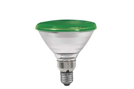 Лампа PAR38 рефлекторная, зеленая E27, 122мм 80W 27283