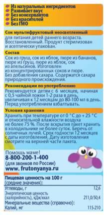 Сок ФрутоНяня Мультифруктовый с мякотью с 6 мес 200 мл