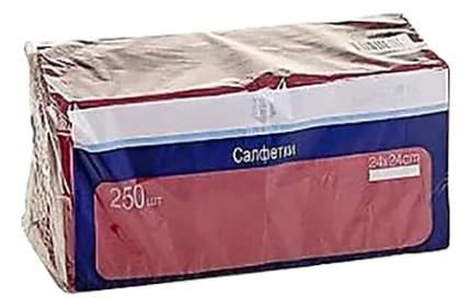 Салфетки H-Line двухслойные бордовые 24*24 см 250 штук