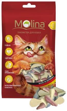 Лакомство для кошек для кошек Molina , ассорти, 1шт, 0.042кг