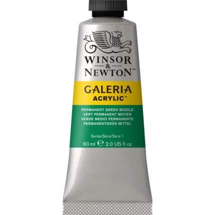 Акриловая краска Winsor&Newton Galeria перманентный зеленый средний 60 мл