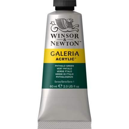 Акриловая краска Winsor&Newton Galeria зеленый фтало 60 мл
