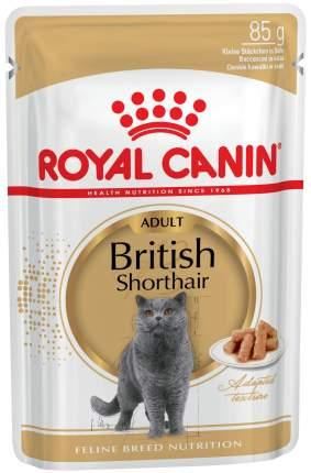 Влажный корм для кошек Royal Canin British Shorthair Adult, мясо, 85 г