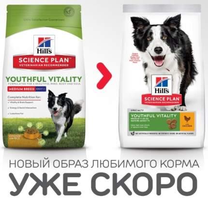 Сухой корм для собак Hill's Science Plan Youthful Vitality Medium, курица и рис, 10кг