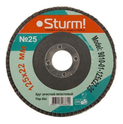 Диск лепестковый для угловых шлифмашин Sturm! 9010-01-125x22-25