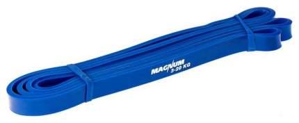 Эспандер Hawk Magnum синий