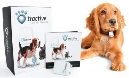 Трекер для домашних животных Tractive GPS Pet Tracking Device (TRATR1)