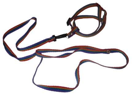 Поводок +шлейка для собак  ГеоГазТехнология  Радуга, 134см