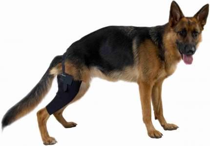 Протектор на правое колено Kruuse Rehab Knee Protector для собак (L)