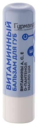 Бальзам для губ Гурмандиз Витаминный 4,2 г