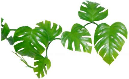"""Декоративное растение LUCKY REPTILE для террариумов """"Pothos Vine"""""""