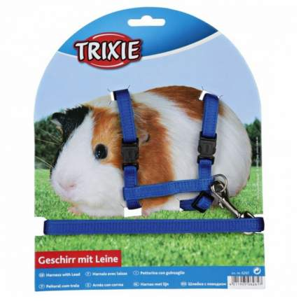 Поводок и шлейка TRIXIE для морских свинок, синий, красный