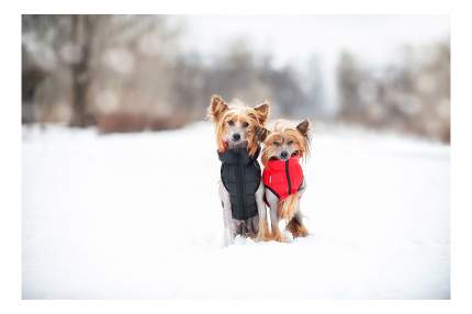Куртка для собак AiryVest размер M унисекс, черный, красный, длина спины 50 см