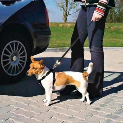 Ремень безопасности для собак TRIXIE, автомобильный, обхват живота/груди: 50-70 см, M