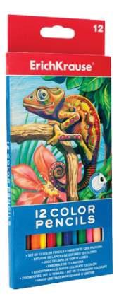 Карандаши цветные Erich Krause Хамелеон 12 цветов