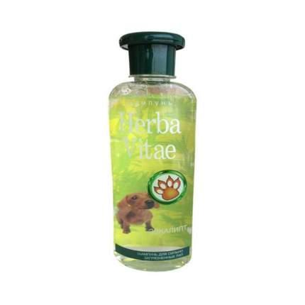 Le Artis Шампунь Herba Vitae для сильно загрязненных лап, 250 мл