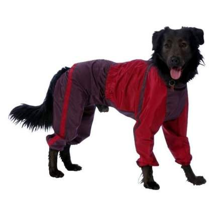 Комбинезон для собак ТУЗИК Пудель карликовый мужской, в ассортименте, длина спины 36 см