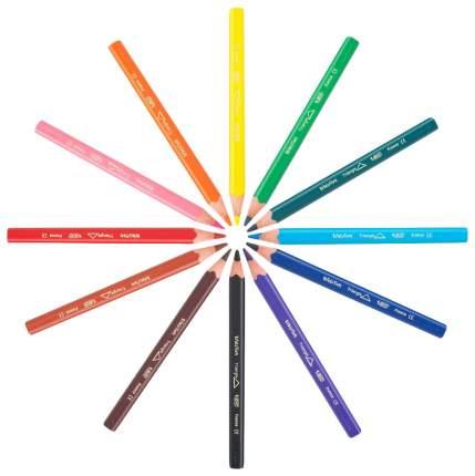 Карандаши цветные BIC Эволюшен триэнжел 12 шт.