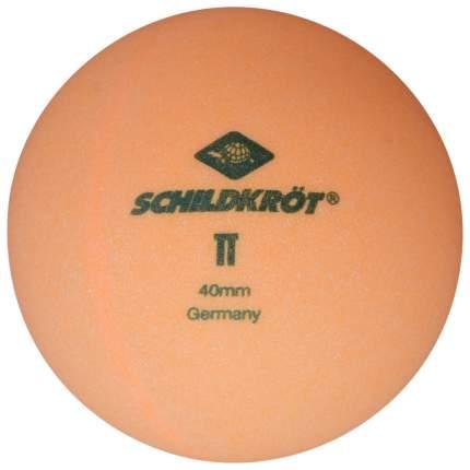 Мячи для настольного тенниса Donic 2T-Club оранжевые, 120 шт.