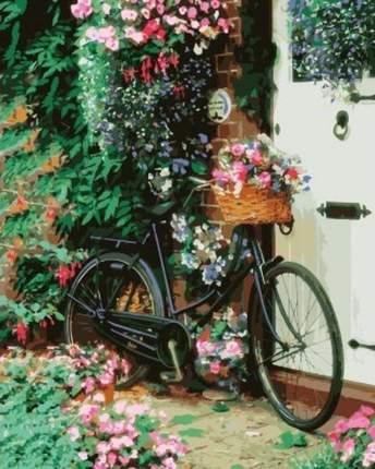 Картина по номерам Цветной Велосипед с цветами, 40x50 см