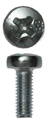 Винт Зубр 4-303156-06-010 M6x10 мм, ТФ6, 12 шт,