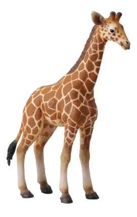 Фигурка лошадки Collecta Жеребенок Сетчатого Жирафа 88535b